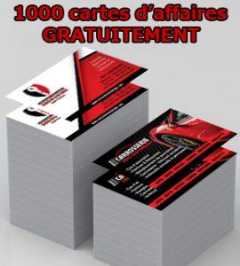 1000 cartes de visites